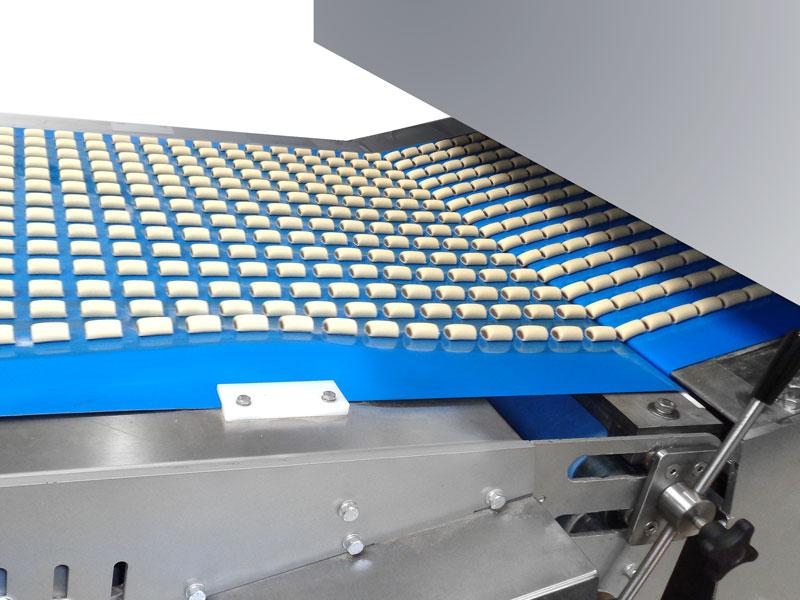 petfood conveyor