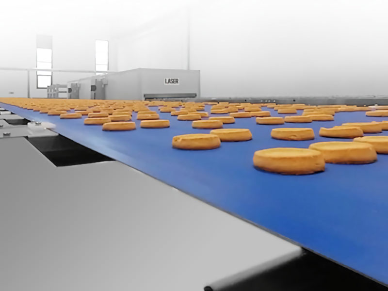soft biscuit line